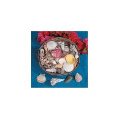 use shells in the centerpieces! - Jumbo Basket Of Seashells - OrientalTrading.com