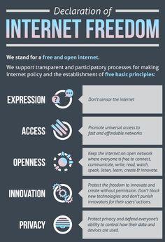 거의 모든 인터넷의 역사 (56) - 인터넷과 네트워크의 자유