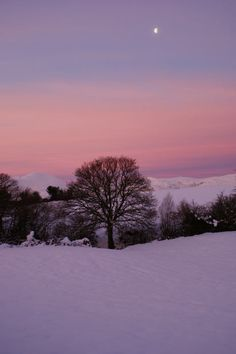 """North Wales at sunrise.  Picture: DEBBIE QUINN"""