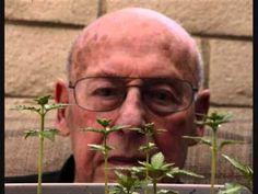 Masti a další přípravky z konopí kolují mezi seniory už dlouho