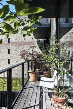 Green oase on the terrace with lots of plants Outdoor Living, Outdoor Decor, Green Plants, Planters, Exterior, Modern, Terraces, Inspiration, Product Design