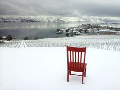 The Red Chair -View from Quails Gate Winery on the Westside Wine Trail in the Okanagan Valley www.redchairtravels.com www.kelownabandb.com Quails, B & B, Wine Country, Outdoor Furniture, Outdoor Decor, British Columbia, Gate, Chair, Red