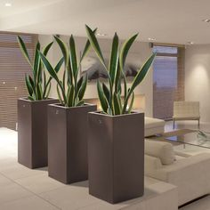 Search all products, brands and retailers of Planters: discover prices, catalogues and new features Garden Planters, Indoor Garden, Indoor Plants, House Plants Decor, Plant Decor, Vertical Garden Wall, Modern Plant Stand, Decoration Plante, Walled Garden