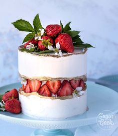 Erdbeer Bug Cake Tutorial + Video Zuckerkuchen-Show Strawberry Bug Cake Tutorial + Video Sugar Cakes Show Fresh Strawberry Cake, Strawberry Puree, Strawberry Shortcake, Strawberry Birthday Cake, Raspberry Cake, Strawberry Desserts, Cake Recipes, Dessert Recipes, Cake Trends