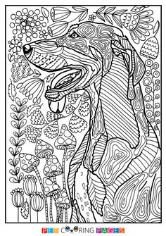 """Free printable Black and Tan Coonhound coloring page """"Shorty"""" available for download. Simple and detailed versions for adults and kids."""