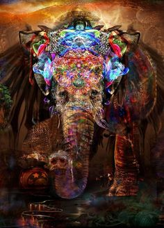 An Elephant Art Collection