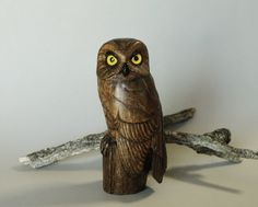 Saw Whet Owl Wood Sculpture Bird Carving by TurtleMtnArtistry