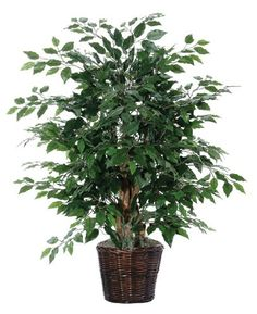 4' Artificial Potted All Natural Ficus Bush in Brown Pot * Details can be found by clicking on the image.