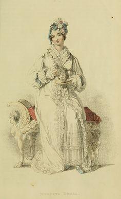 Jane's dressing gown/morning dress