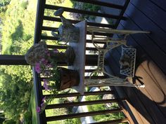 Antique Singer Sewing Machine table with old painted Watering Can!