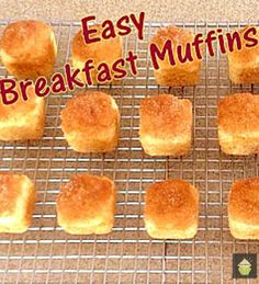 Easy Breakfast Muffins. Perfect with a cup of coffee! #muffins #easyrecipe #breakfast