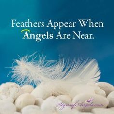 Angels bring feathers