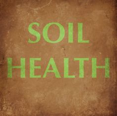 """The Atlantic reports: """"Healthy Soil Microbes, Healthy People: The microbial community in the ground is as important as the one in our guts."""" http://www.theatlantic.com/health/archive/2013/06/healthy-soil-microbes-healthy-people/276710/"""