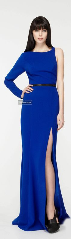 Georges Hobeika Fall Winter 2013-14 Ready to Wear Collection