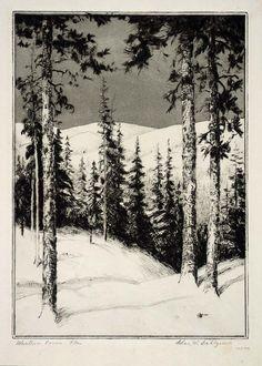Western Pines by Charles W. Dahlgreen / American Art