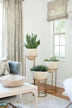 indoor plant guide - Becki Owens