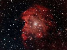 and the Monkey Head Nebula - Cataleya Photography Tools, Beauty Photography, Image Plate, Star Cluster, Light Year, Dark Skies, Constellations, Astronomy, Cosmos