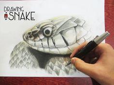 Speed drawing - snake