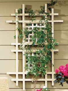 free trellis fence plans - Google Search