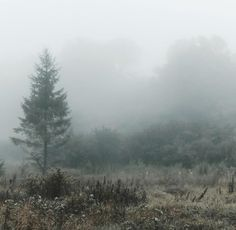 Melancholy, Aesthetic Photo, Mists, Chill, Witch, Snow, Mountains, Nature, Archive