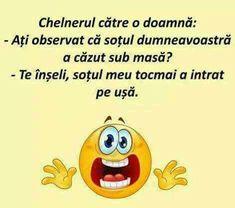 Humor, Memes, Funny, Humour, Moon Moon, Animal Jokes, Comedy, Meme, Hilarious