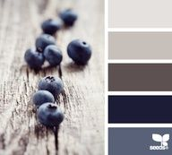 ColorFUL Palette Inspiration - Blueberry spectrum - #color #inspiration #colorpalette