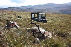 #tb when we were happy and free stalking in Scotland.  #highlands #bladearmour #prostaff #stalking #reddeer