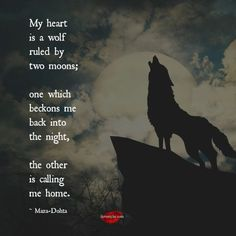 My heart is a wolf ruled by two moons one which beckons me back into the night, the other is calling me home. ~Maza-Dohta <3 Come by and join LSI on Facebook. :) https://www.facebook.com/LoveSexIntelligence