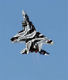 機動飛行を行う飛行教導群のF-15戦闘機=宮崎県新富町の航空自衛隊新田原基地(彦野公太朗撮影)