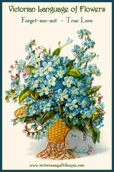 Victorian Language of Flowers - Forget-me-not