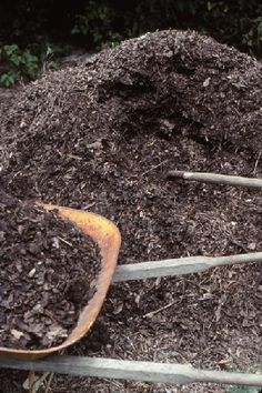Square Foot Gardening Mistakes - learn from our mistakes before you begin your own gardens! Potager Garden, Garden Compost, Moss Garden, Lawn And Garden, Growing Gardens, Farm Gardens, Small Gardens, Organic Soil, Organic Gardening