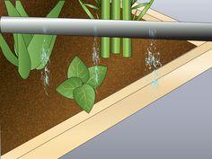 Un jardín de permacultura está diseñado para imitar el crecimiento natural e interacción entre especies de forma que no se usen fertilizantes ni pesticidas. Típicamente está compuesto de plantas nativas y diseñado de forma que se pueda expl...