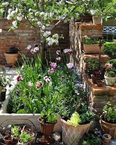 32 Beautiful Small Flower Gardens And Plants Ideas. If you are looking for Small Flower Gardens And Plants Ideas, You come to the right place. Below are the Small Flower Gardens And Plants Ideas. Small Flower Gardens, Small Courtyard Gardens, Small Courtyards, Outdoor Gardens, Small Cottage Garden Ideas, Cottage Garden Design, Small Garden Design, Very Small Garden Ideas, Cottage Garden Patio