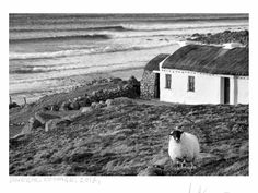 See Ireland in a new way with these stunning black and white! Ireland might be famous for its 40 shades of green, but there's something about the simplicity of black and white photographs that can really emphasize its natural beauty!