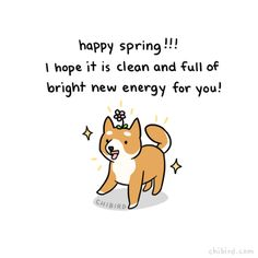 Happy spring from a happy, sparkling clean shibe!