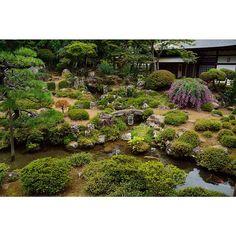 Beautiful japanese garden 2. #beautiful #japanese #garden #erinji #temple #photo #photos #photograph #yamanashi #japan #nikon #nikond7100 #d7100 #nikontop #美しい #日本 #庭園 #恵林寺 #寺 #写真 #山梨県 #ニコン