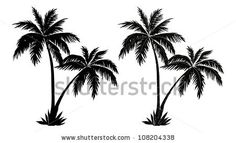 stock-vector-tropical-palm-trees-black-silhouettes-and-outline-contours-on-white-background-vector-108204338.jpg (450×274)