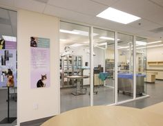 Windows into surgery | Hospital Design