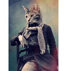 Cat in Scarf poster – Buy Me Brunch