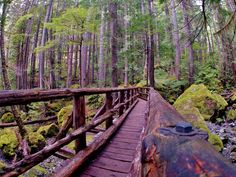 Lena Lake, in the Olympic Peninsula will Inspire any #hike.