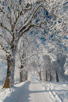 Winter Winter Beauty Pinterest Winter Snow And Scene - 30 wonderfully wintery scenes around world