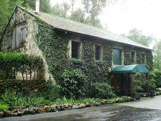 Buena Vista Winery - Sonoma Valley, CA.  California's first premium winery.
