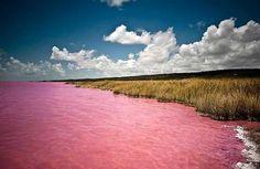 Lago Retba Este grueso cuerpo salino de agua es el hogar de toneladas de algas, lo cual es lo que produce que el lago emita este hermoso col...