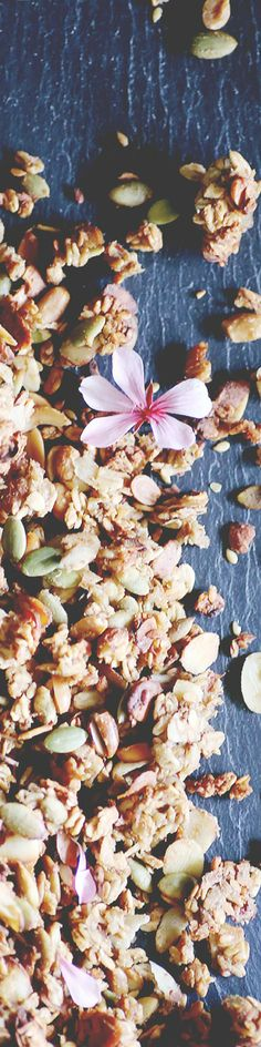 Date Sweetened Homemade Granola with Almonds and Pumpkin Seeds