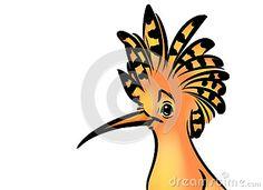 Bird hoopoe cartoon illustration isolated image