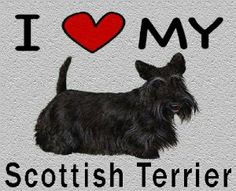I Love My Scottish Terrier Cutting Board - Great For Kitchens by MyHeritageWear. $34.95