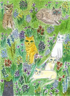 summer cats by vivienne Strauss