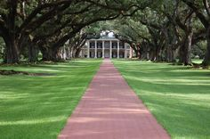 oak alley plantation | Oak Alley Plantation