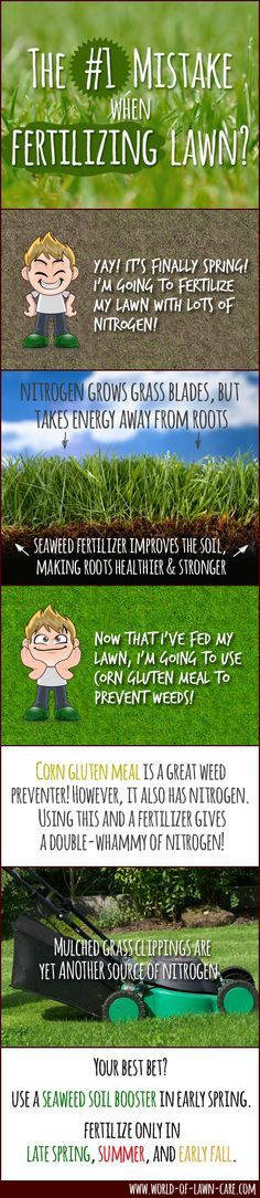 Basics of Spring Fertilizing Include Avoiding The Number One Spring Lawn Care Mistake