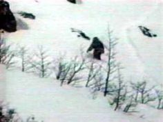"""cryptid-wendigo: """"It is thought that the Yeti is a nocturnal creature. Most eye witness sightings of the Yeti happen at night. This also serves as an advantage to the beast - because it is so dark, it. Mountain Monsters, Lake Monsters, Unexplained Mysteries, Unexplained Phenomena, Paranormal, Tintin Au Tibet, Scream, Bigfoot Photos, Pie Grande"""